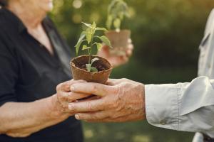 Promocyjny kredyt dla emerytów